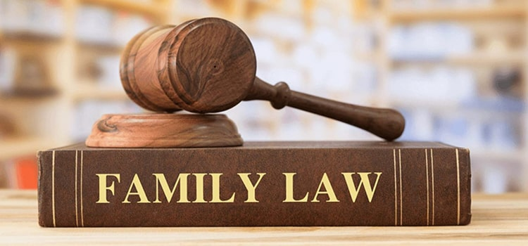 Read more about the article BROOKLYN GUARDIANSHIP LAW ATTORNEY